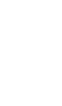 Loza Foundation